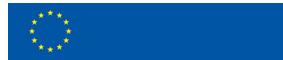 The official European Erasmus logo